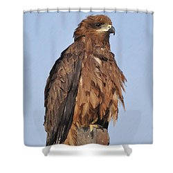 Keeping An Eye On The Enemy Shower Curtain