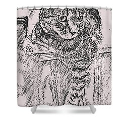 Keeping Watch Shower Curtain by David G Paul