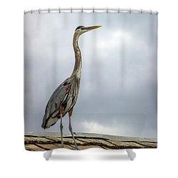 Keeping Watch Shower Curtain