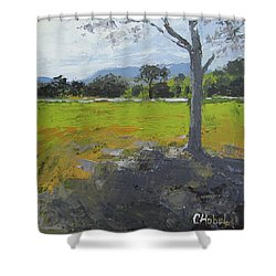 Shower Curtain featuring the painting Kenilworth Landscape Queensland Australia by Chris Hobel