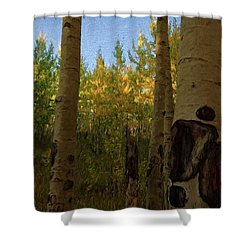 Kenosha Pass Shower Curtain