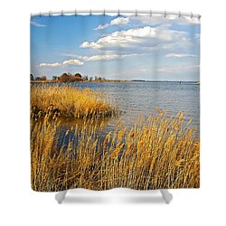 Kent Island Shower Curtain by Brian Wallace