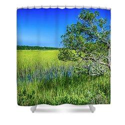 Kent Mitchell Nature Trail, Bald Head Island Shower Curtain