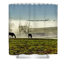 Kentucky Bluegrass Morning #1 Shower Curtain