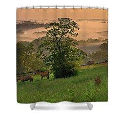 Kentucky Morning Sunshine. Shower Curtain
