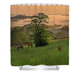 Kentucky Morning Shower Curtain