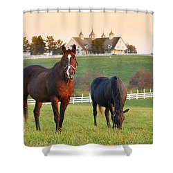 Kentucky Pride Shower Curtain
