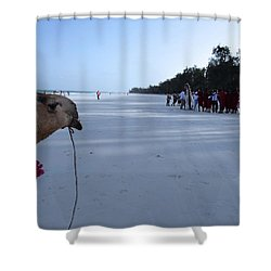 Kenya Wedding On Beach Distance Shower Curtain