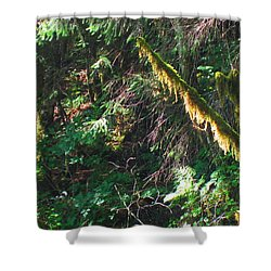 Ketchikan Green Shower Curtain