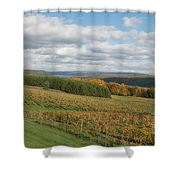 Keuka In Autumn Shower Curtain by Joshua House