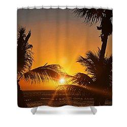 Key Art Shower Curtain by JAMART Photography
