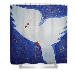 Key To Happiness Shower Curtain
