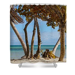 Key West Afternoon Shower Curtain