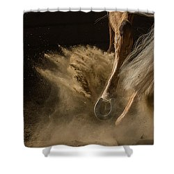 Kicking Up Your Heels Shower Curtain