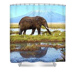 Kilimanjaro Mountain Shower Curtain