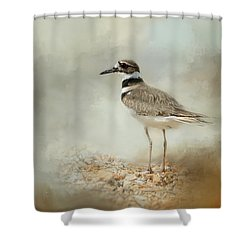 Killdeer On The Rocks Shower Curtain by Jai Johnson