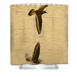 Killdeer Over The Pond Shower Curtain by Carol Groenen