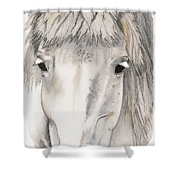 Shower Curtain featuring the painting Kind Eyes by Shari Nees