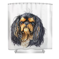 King Charles Spaniel Shower Curtain