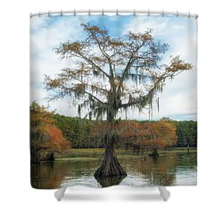 King Cypress Shower Curtain