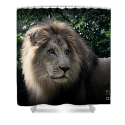 Shower Curtain featuring the photograph King Kamau by Lisa L Silva