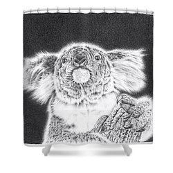 King Koala Shower Curtain