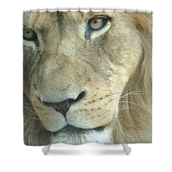 Shower Curtain featuring the photograph King by Margaret Bobb