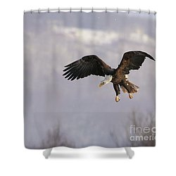 King Of Heavens Shower Curtain