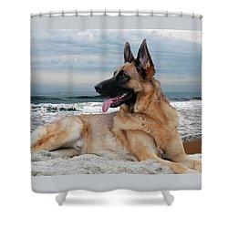 King Of The Beach - German Shepherd Dog Shower Curtain