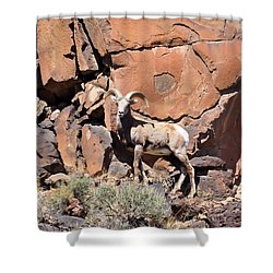 King Of The Cliff Shower Curtain