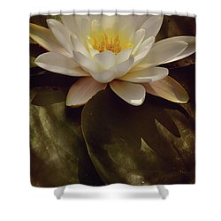 King Of The Lake Shower Curtain