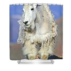King Of The Mountain Shower Curtain by Scott Mahon