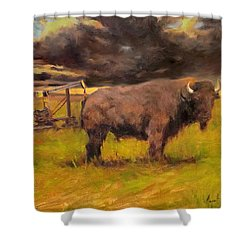 King Of The Prairie Shower Curtain by Margaret Aycock