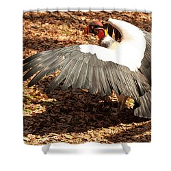 King Vulture 3 Strutting Shower Curtain by Chris Flees