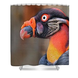 King Vulture Shower Curtain