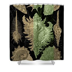 Shower Curtain featuring the digital art Kingdom Of Golden Seashells by Serge Averbukh