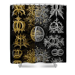 Shower Curtain featuring the digital art Kingdom Of Silver Single-celled Organisms  by Serge Averbukh