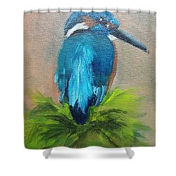 Kingfisher Bird Shower Curtain