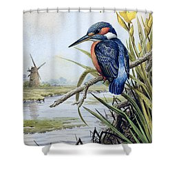 Kingfisher With Flag Iris And Windmill Shower Curtain