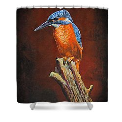 Kingfish.....waiting For Dinner Shower Curtain