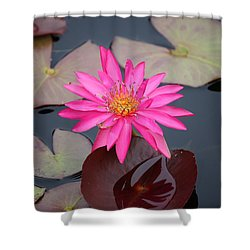 Kinky Stamens Shower Curtain