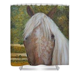 Kisha Shower Curtain by Eydie Paterson