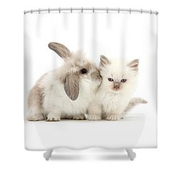 Kiss Her Fluffy Cheek Shower Curtain