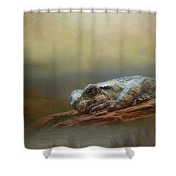 Kiss Me Shower Curtain by Steven Richardson