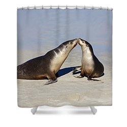 Kiss Shower Curtain by Mike  Dawson