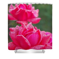 Kissed By Dew Shower Curtain