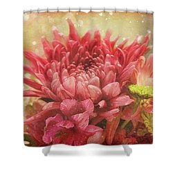 Kissed With Snow Shower Curtain