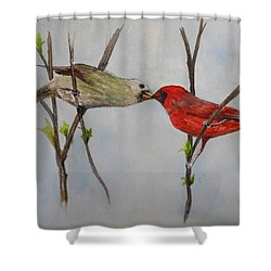 Kissing Cardinals Shower Curtain