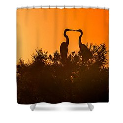 Kissing Herons  Shower Curtain