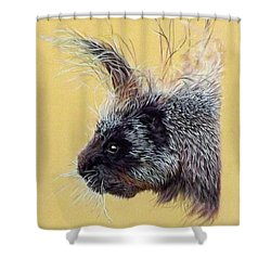 Kit Shower Curtain